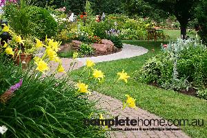 Springs best Blooms