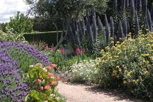 Sustainable showpiece: David Glenns garden