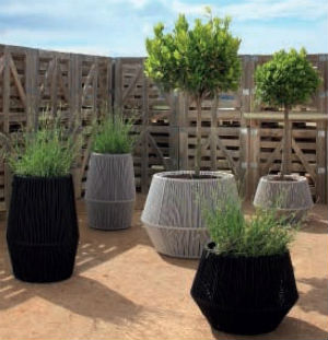 Go Green - Potted Plants