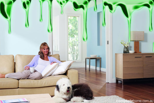 Is your home toxic?