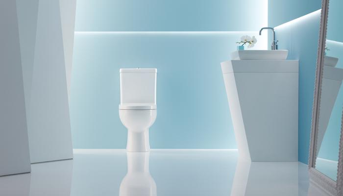 6 tasteful toilets