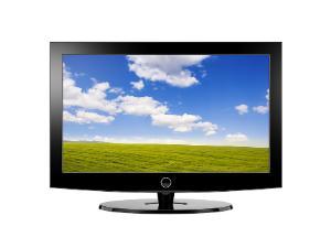 Product spotlight: Lizel weatherproof TVs