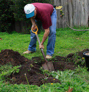 A guide to soil preparation