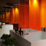 Mandarin orange bathroom design