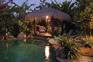 A Rain Forest Retreat