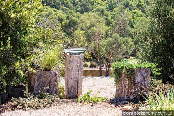 A seamless garden design with a quintessential australian for Australian garden designs pictures