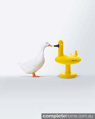Kitchen appliance - alessi duck timer