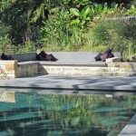A bush-contemporary pool design