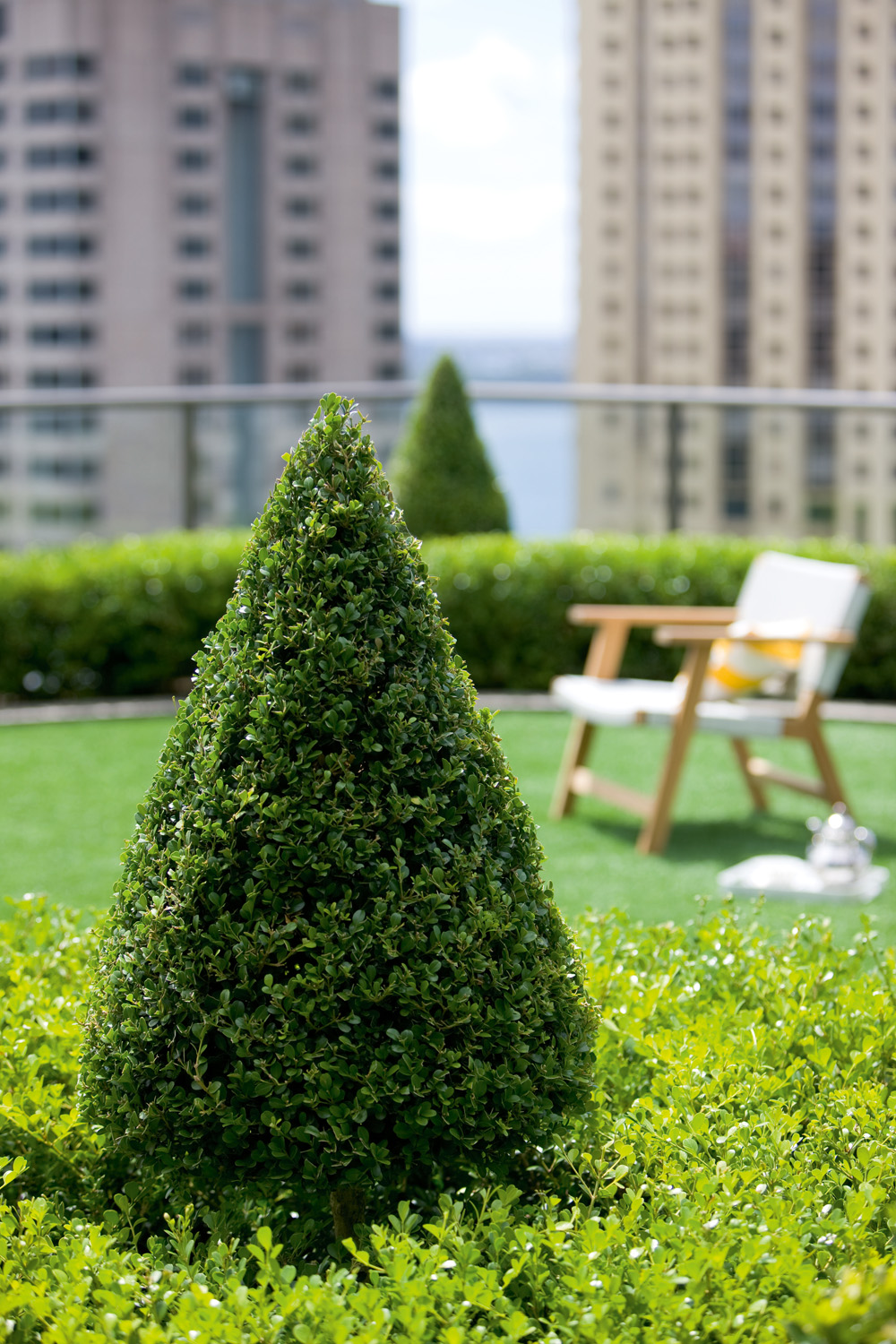 The ultimate roof garden guide