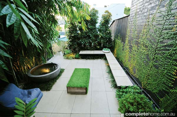 Real backyard inner city courtyard garden design for Terrace garden design
