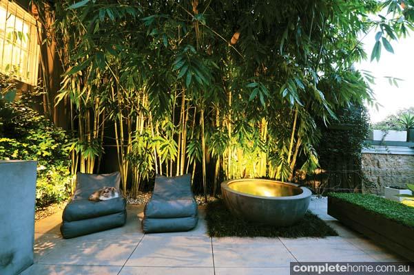 Real backyard inner city courtyard garden design for Terrace 33 city garden