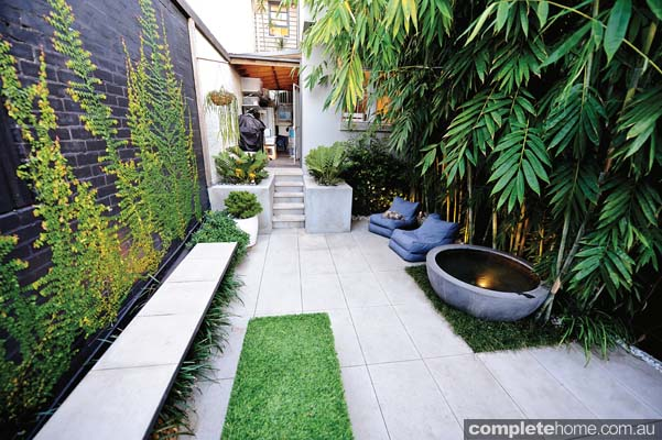 Real backyard inner city courtyard garden design for Courtyard entertaining ideas