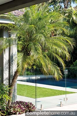 Lush tropical plants are a feature of this landscape design from Franklin Landscape & Design.