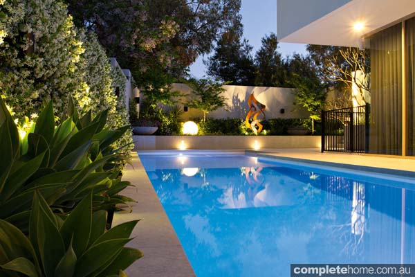 A contemporary landscape design with lush planting from Tim Davies Landscaping.