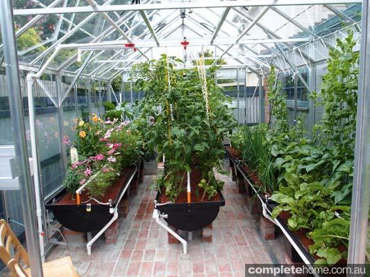 organic produce greenhouse