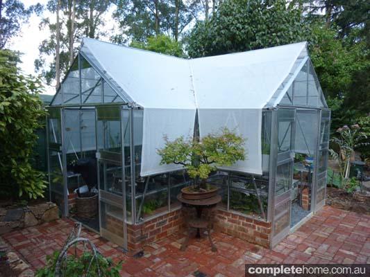 Sage greenhouse