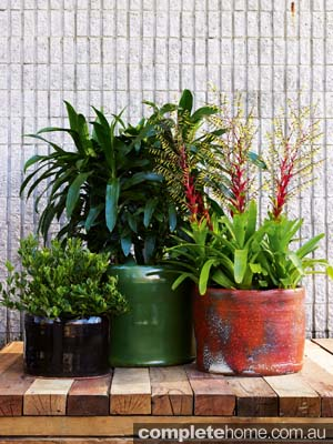 outdoor pots rustic