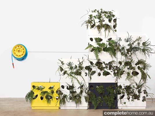 versatile gardenwall