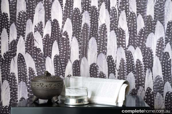 feather theme wallpaper