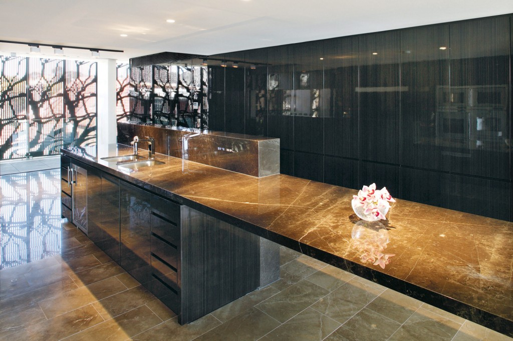 Sophisticated & integrated kitchen design