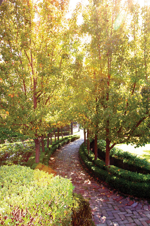 A Total Concept garden driveway