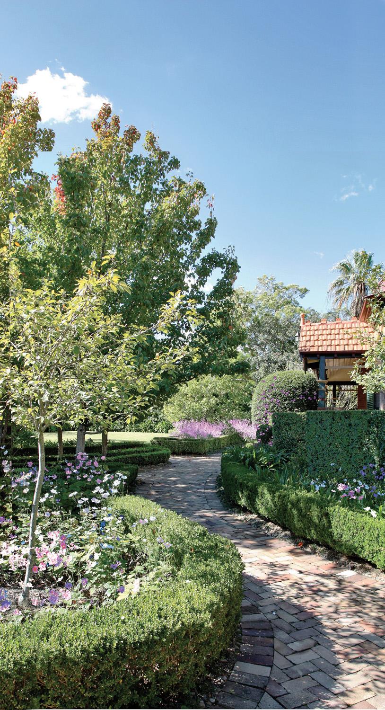 A Total Concept garden