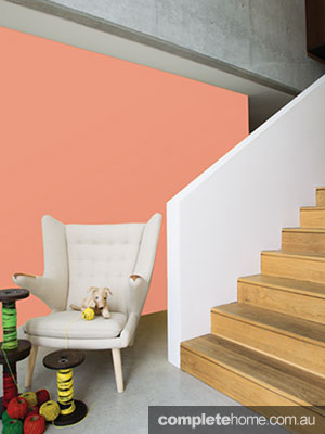 Taubmans paint blush coral colour wall paint