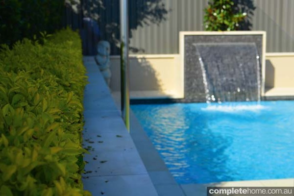 jakin pool with landscaping and water feature
