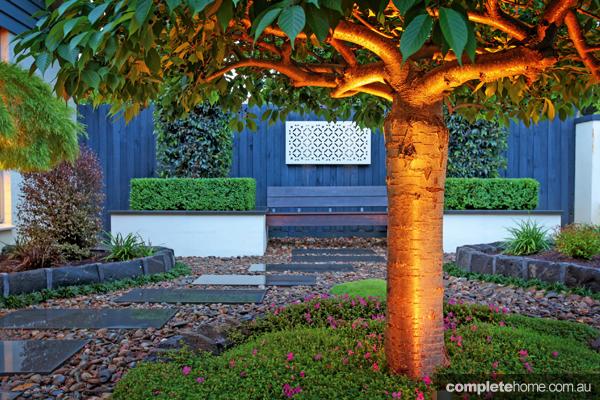 modern landscape garden