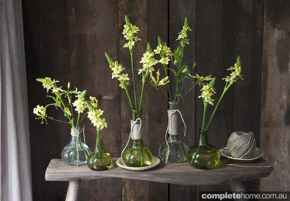 209964 single flowers multiple vases using string around neck to tie in the different shapes