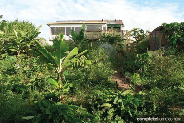 "Rather than go bush, this couple chose to ""farm"" in the suburbs."