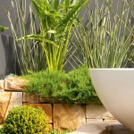 Contemporary landscaped spaces