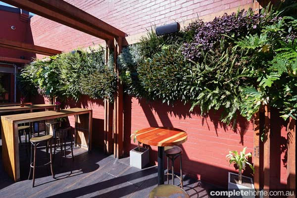 When space is at a premium, a vertical garden or green wall is the ideal solution