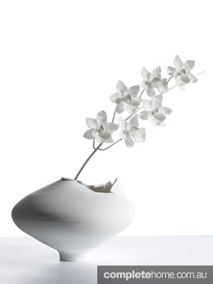 Cymbidium-Ming-Vase-WHT-BG2