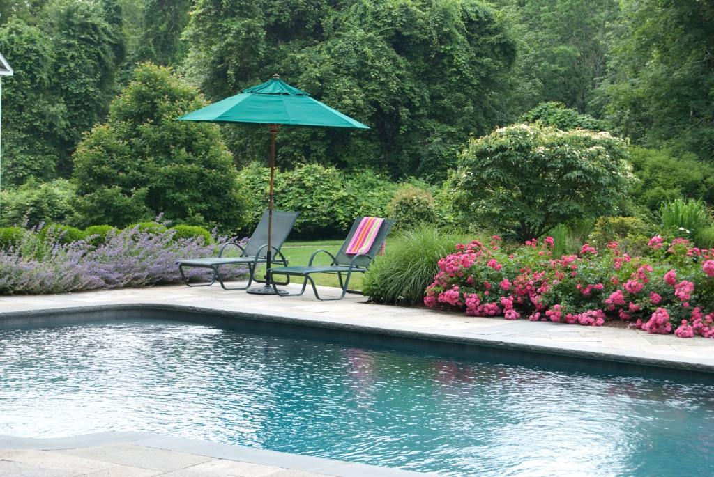 Pool near garden