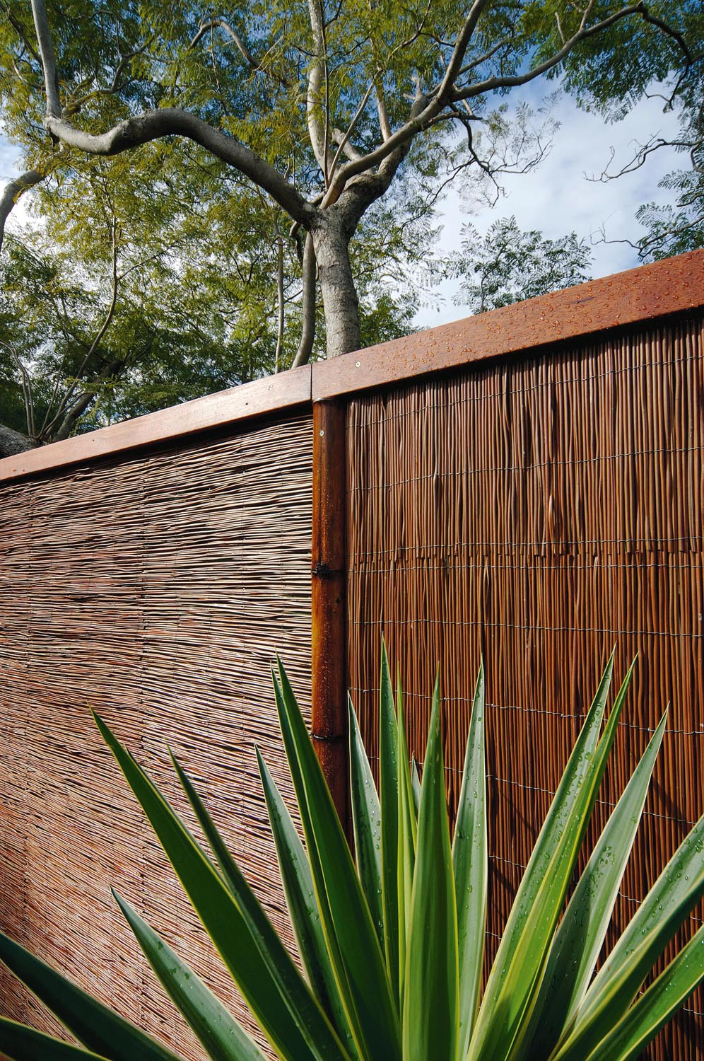 Natureed Fencing