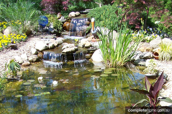 Ponds and water features for your backyard