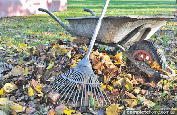 rake up fallen leaves and pop into the home composter