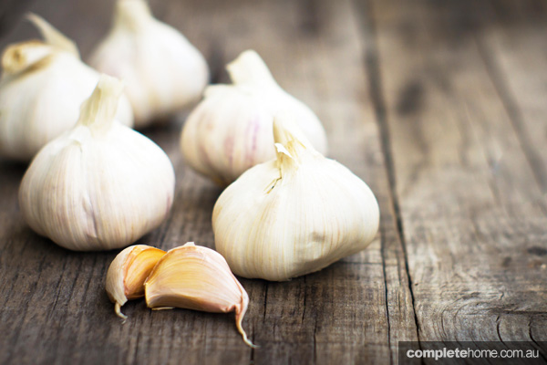 GOG_OrganicLiving_Garlic_EDITED1