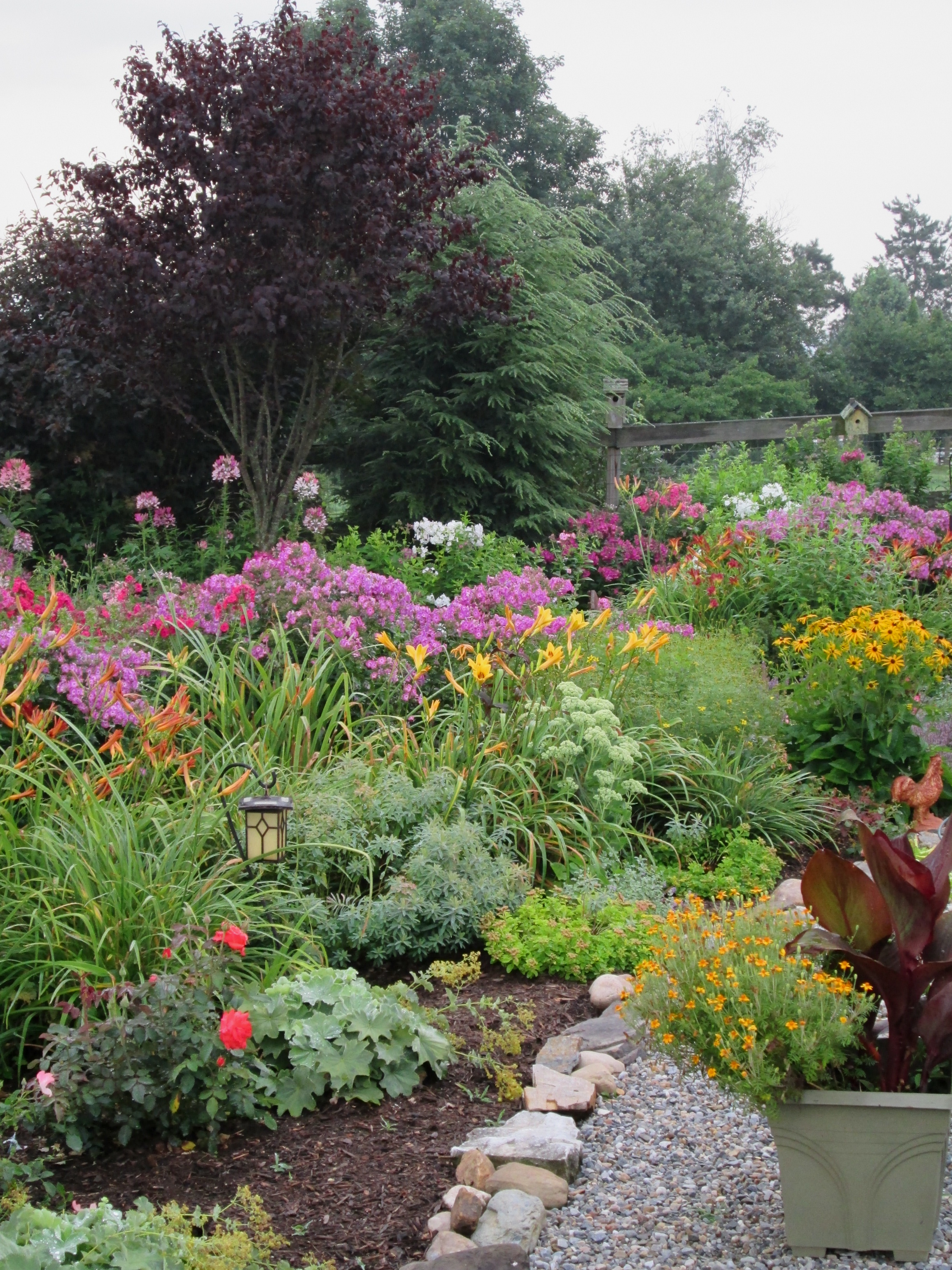 How to create easy-care garden beds and borders