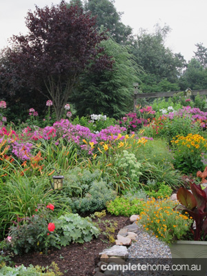 How To Create Easy Care Garden Beds And Borders Completehome
