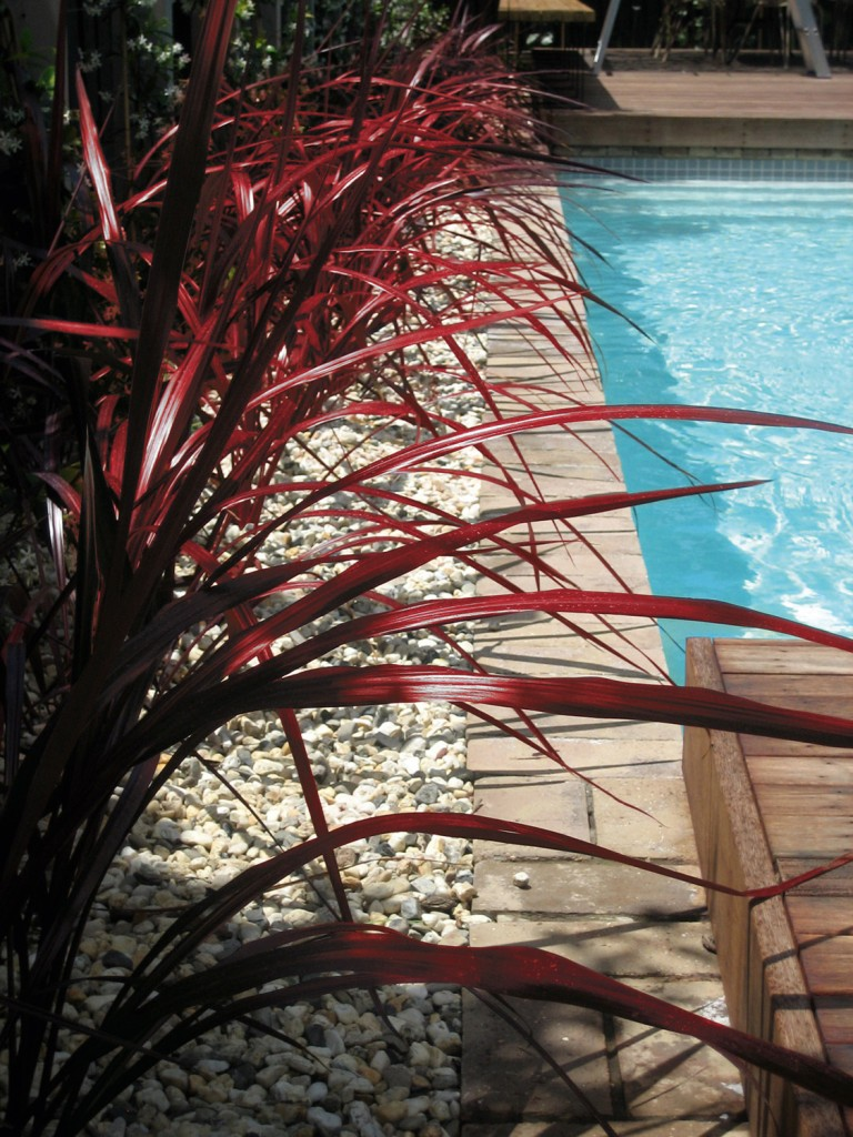 Red Fount_Pool