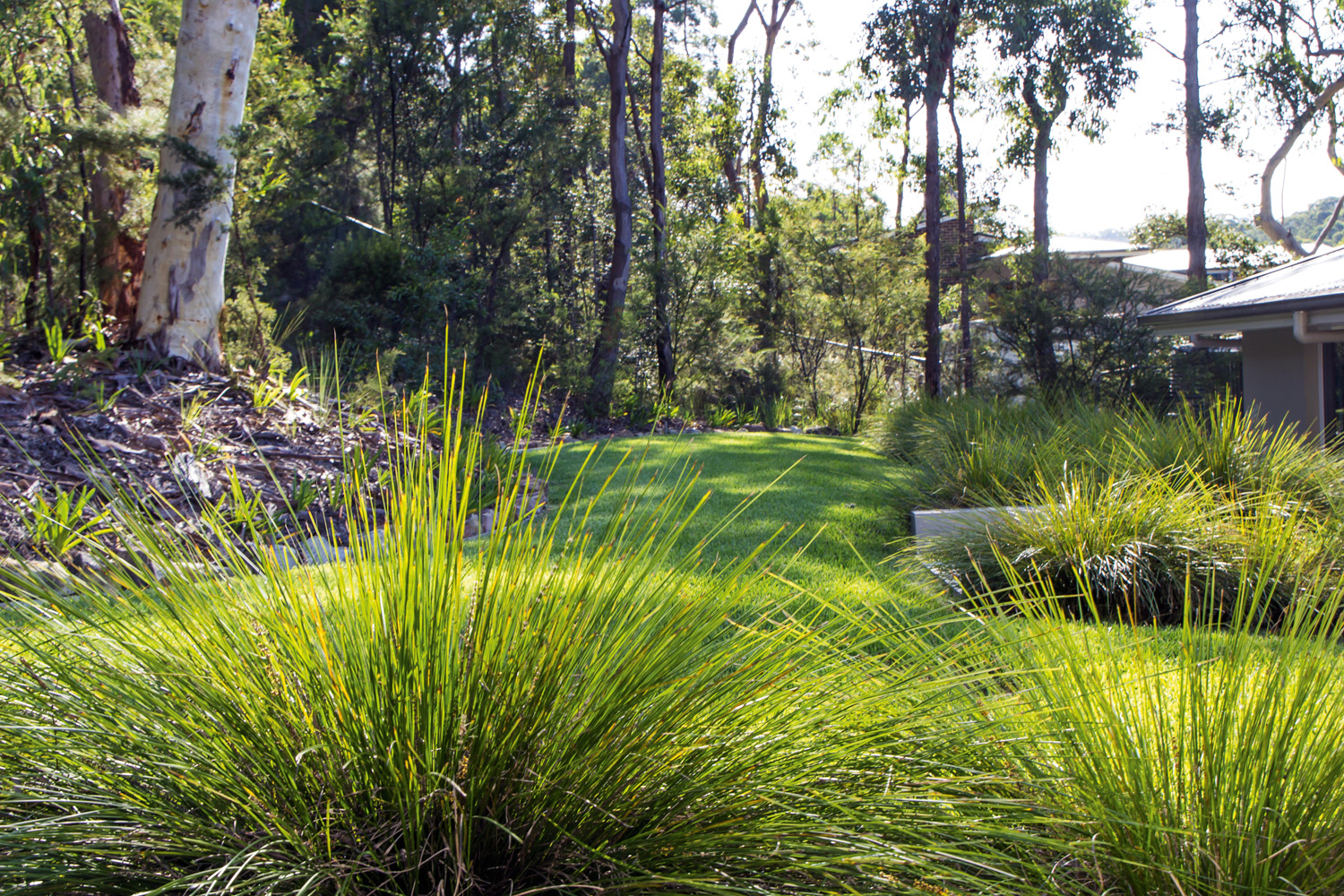 The garden visually connects with the bushland but still achieves the required policy controls in a bushfire-prone area