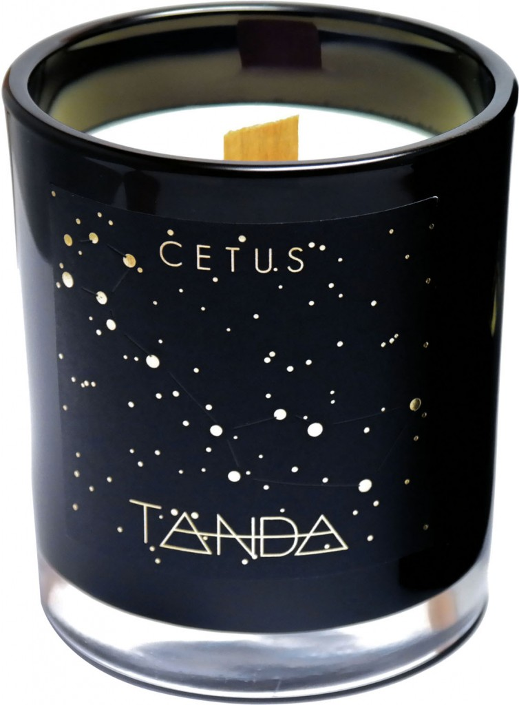 Cetus candle from the Constellations Collection, $44, tandamodern.com