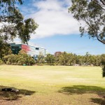 Turf project in the heart of Melbourne