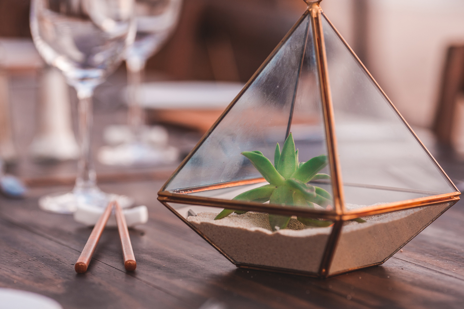 Terrariums: your guide to caring for these miniature gardens